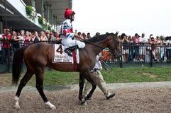 Eerste Kerel met Jockey Ramon Dominguez royalty-vrije stock afbeelding