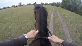 Eerste persoonsmening van het berijden van een paard Standpunt van ruiter het lopen bij hengst bij aard POV-motie Sluit omhoog Stock Foto