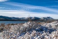 Eerste sneeuw in de bergen Stock Foto