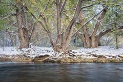 Eerste sneeuw op een rivier royalty-vrije stock afbeelding