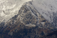 Eerste sneeuw op Haut DE Cry Stock Fotografie