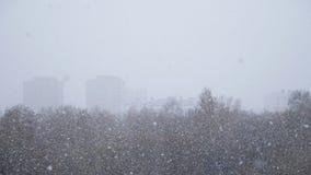 Eerste Sneeuwval Sneeuw het Vallen stock footage