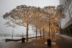 Eerste Sneeuwval van het Seizoen in Manhattan royalty-vrije stock fotografie