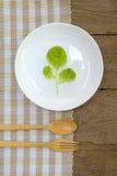 Eet gezond eten groente 4 Royalty-vrije Stock Afbeeldingen