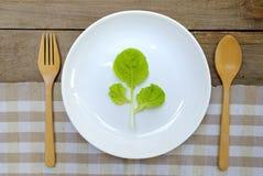 Eet gezond eten groente 3 Stock Afbeelding