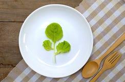 Eet gezond eten groente 3 Stock Foto