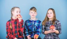 Eet natuurlijk, ben gezond Kleine groep kleine kinderen die natuurlijke rode appelen houden De natuurvoeding is goed voor kindere stock fotografie
