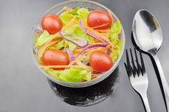 Eet salade Royalty-vrije Stock Foto's