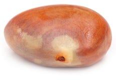 Eetbaar zaad van jackfruit royalty-vrije stock afbeeldingen