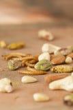 Eetbare insecten en noten Royalty-vrije Stock Foto's