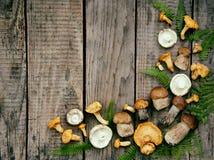 Eetbare wilde paddestoelen, boleet, russule, cantharellen op de houten achtergrond Royalty-vrije Stock Foto