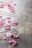 Eetstokjes en sakuratakken op grijze steenachtergrond Japans voedselconcept Hoogste mening, exemplaarruimte royalty-vrije stock afbeeldingen