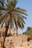 004 Eeuwige Luxor Stock Afbeelding