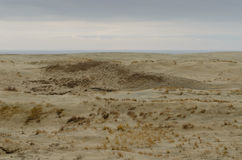 EFA van het zandduin Royalty-vrije Stock Foto