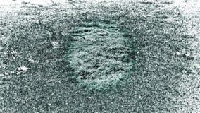 Efecto blanco y negro ilustración del vector