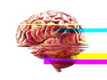 Efecto de la interferencia del fracaso del cerebro Imagen de archivo libre de regalías