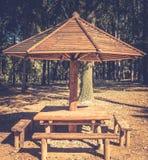 Efecto de madera de la tabla de la comida campestre y de la neblina de los bancos Foto de archivo libre de regalías