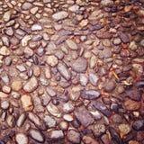 Efecto mojado del vintage de la calle de la piedra del adoquín Piedra de pavimentación de la calle Imagen de archivo