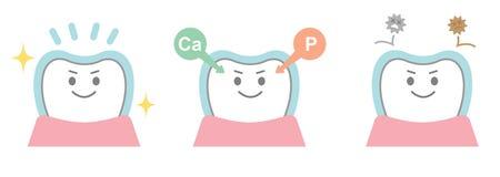 Efectos del fluoruro sobre los dientes Imagenes de archivo
