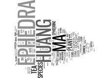 Efedra mA Huang Word Cloud Concept Immagine Stock