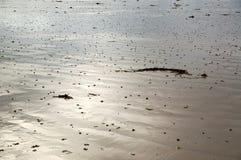 Efeito da baixa maré Fotografia de Stock Royalty Free
