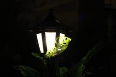 Efeito da luz Fotografia de Stock