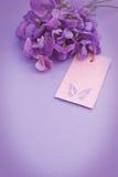 Efeito do vintage da etiqueta das flores de Sweetpea Imagens de Stock Royalty Free
