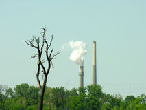 Efeitos ambientais Fotografia de Stock