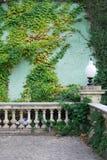 Efeu auf der Retro- Terrasse der Wand Stockbild