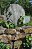 Efeu auf einem Grundstein Stockfoto