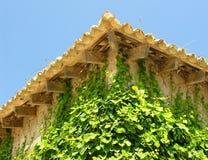 Efeu-Fassade Stockbild
