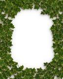 Efeu-Rand oder Feld 3D Lizenzfreie Stockfotos