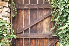Efeu und Holztür Stockfoto