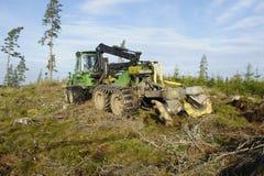 Effacement de camion et de forêt Image stock