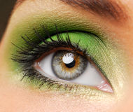 Effective green make-up Royalty Free Stock Image
