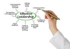 Effective Leadership Stock Photography
