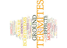 Effects On Ecosystems By Ground Termites Word Cloud Concept Stock Photography