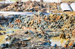 Effects Environmental from Chemicals and heavy metals in soil stock image