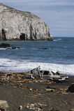 Effects of Tsunami on the coast of Chile royalty free stock photography