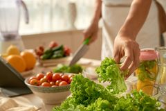 Effectuer la salade photographie stock