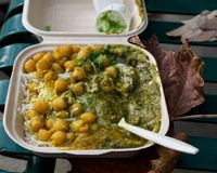 Effectuez le plat indien de veggie sur le banc de parc Image libre de droits