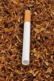 Effectuez une cigarette avec du tabac organique Image libre de droits