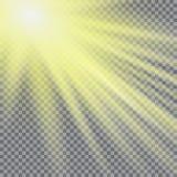 Effekt för genomskinlig för solljus för vektor ljus special signalljus för lins Solexponering med strålar och strålkastaren Arkivbild