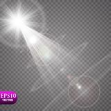 Effekt för genomskinlig för solljus för vektor ljus special signalljus för lins Royaltyfria Foton