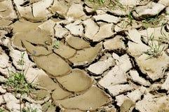 Effekte der globalen Erwärmung Lizenzfreies Stockbild