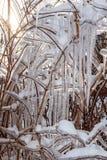 Effekte des Eisregens lizenzfreie stockbilder