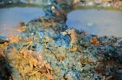 Effekter som är miljö- från kemikalieer och heavy metal i jord Royaltyfri Bild