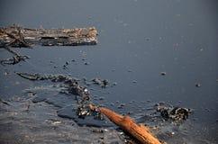 Effekter som är miljö- från vatten som är kontaminerat med kemikalieer och olja Arkivfoto