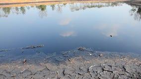Effekter som är miljö- från vatten som är kontaminerat med kemikalieer och olja stock video