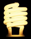 effektiv energilampa för kula Arkivbild